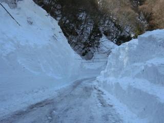 秩父市(旧大滝村)大雪による道路状況調査(2)