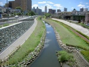 旧芝川浄化後